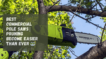 commercial pole saw reviews