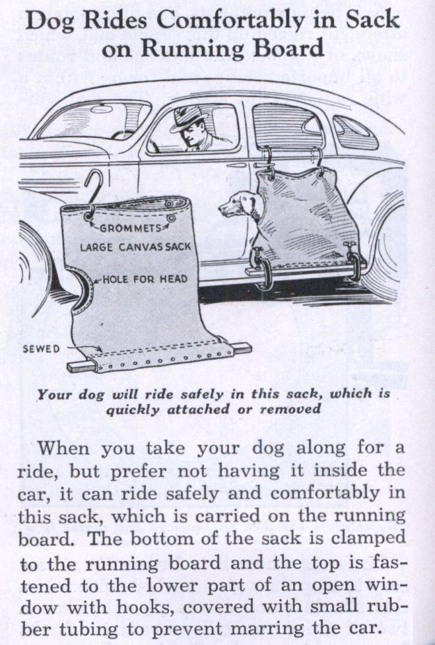 Dog Rides Comfortably in Sack on Running Board. Ad in Modern Mechanix, June 1936.