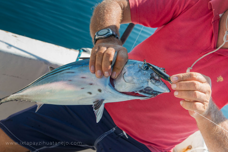 pesca-ixtapa-zihuatanejo_.jpg