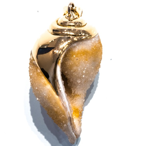 Unique Gold Pendant With Fossilised Shell