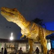 福井県立恐竜博物館に行く。
