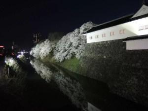 霞城公園の夜桜:2012年4月28日