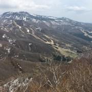 ゲレンデが一望:山形市の瀧山を登る(おまけにオオヤマザクラ) - 2018年春