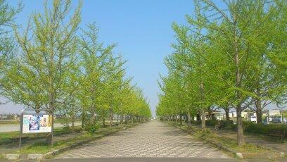 加須はなさき公園 フリマスペース