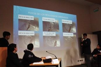 Reportero: Menschliche Fehler (Instituto Nacional)