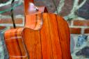 Custom-made Taylor guitar, made from IAF managed Hormigo tree