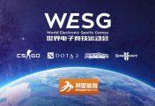 Team Ukraine traci przedstawiciela na WESG [Aktualizacja]