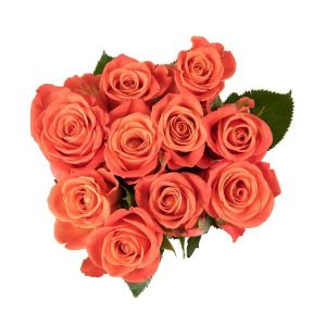 Izami Orange Rose Posy