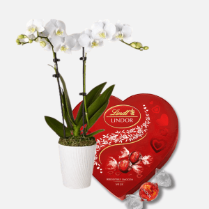 Lindt Heart & Orchid Delight