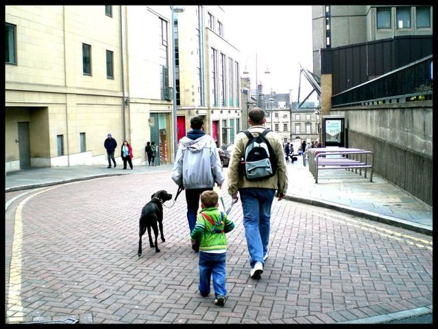 Lesson for parents. Children on a leash (35 pics)