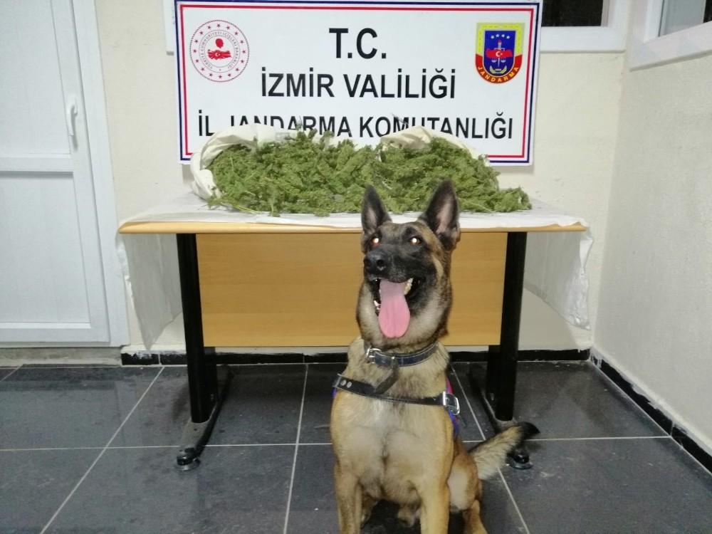İzmir'de 8,5 kilogram uyuşturucu ele geçirildi