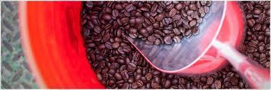 Izon Coffee Roastery WebSite 8