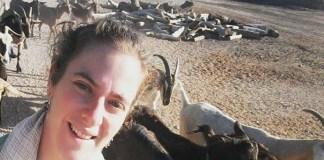 Kecskékkel a sivatagban - fotó: Korányi Eszter