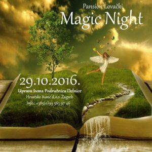 magic-night