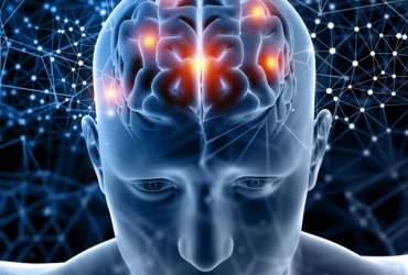 kemo mozak