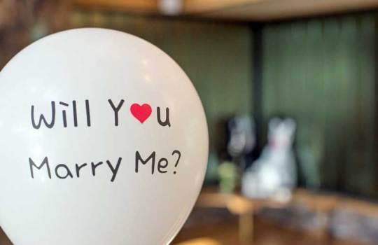 Monogamija kao kulturno-povijesna vrijednost