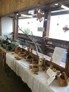 多肉植物と白樺細工作品