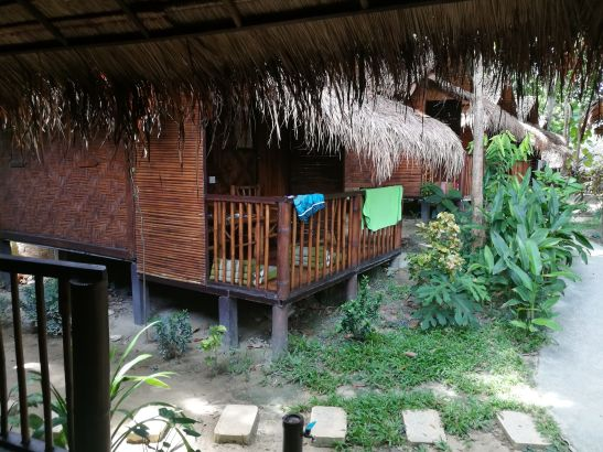 View from my jungle bungalow