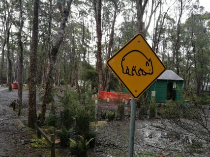 Exploring - funny crossing signs