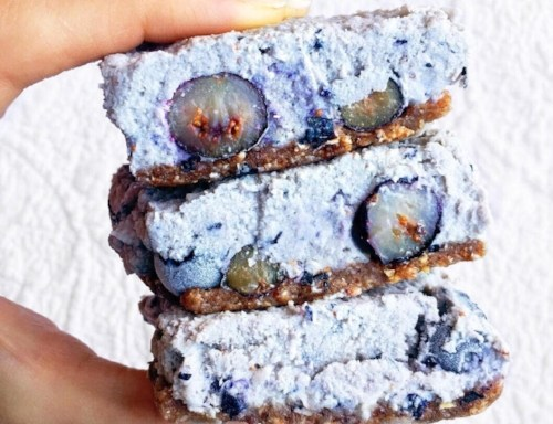 Raw Blueberry and Coconut Bars