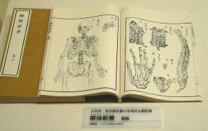 Japan's first treatise on anatomy, copied from Western sources in 1774. (Wikipedia)