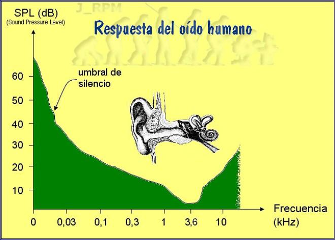 Respuesta del oído humano