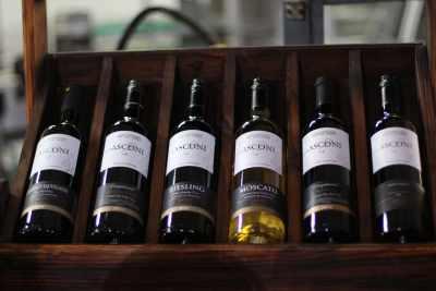 世界でも根強いファンの多いモルドバワイン