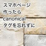 SEOの基礎!canonical(カノニカルタグ)を正しく使おう