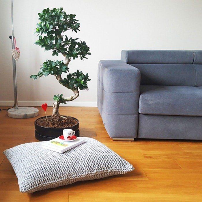 5 ragioni per comprare i cuscini con polistirolo  Giornale di informazione online  notizie su