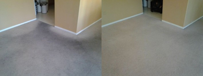 Carpet Cleaning Before After
