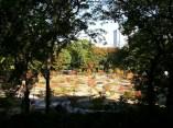 Osaka. Random park.