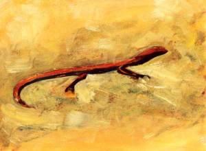 Salamander, acryl 37 x 50 cm