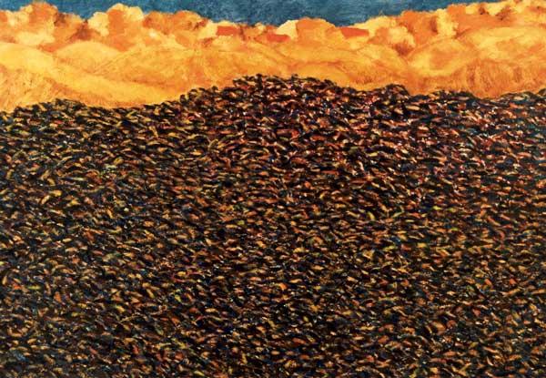 Zonnebloemveld in de herfst, olieverf 70 x 100 cm