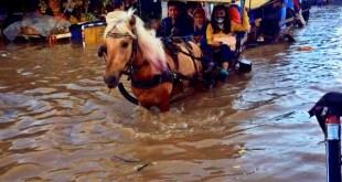 Banjir Bandung Selatan