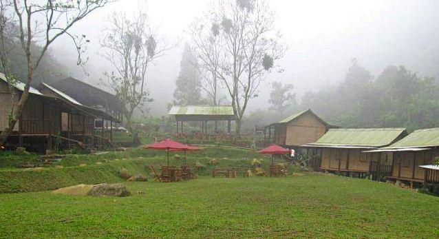 D'Jungle Private Camp – Puncak, Bogor (IdeTrips)