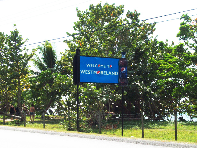 murders in Westmoreland Jamaica