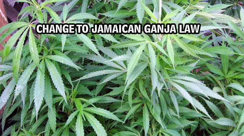 Change Jamaican Ganja marijuana law
