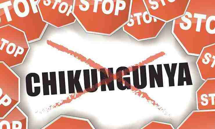 how many people number of people percentage with Chiikungunya Chik V in Jamaica Caribbean world