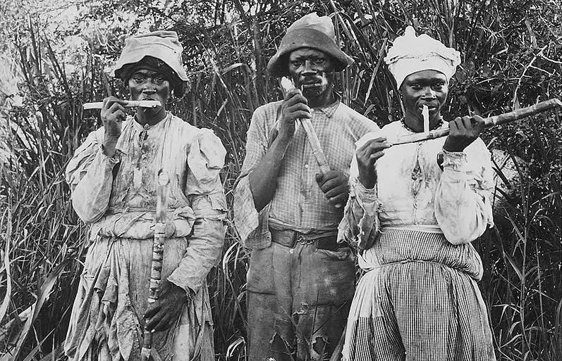 """""""Cane cutters in Jamaica"""" by Unknown - [1]. Licensed under Public Domain via Commons."""