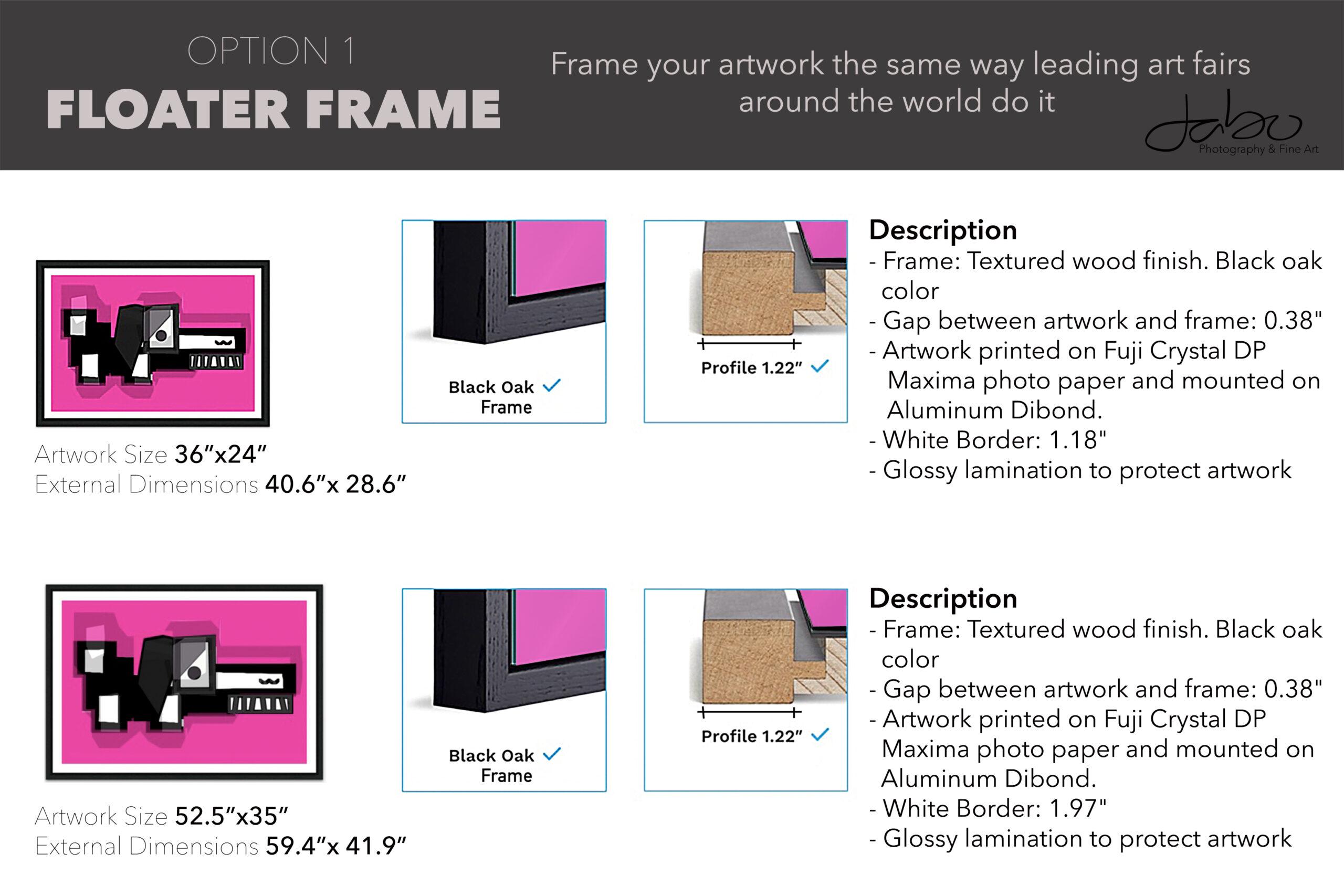 Floater Frame Option 1