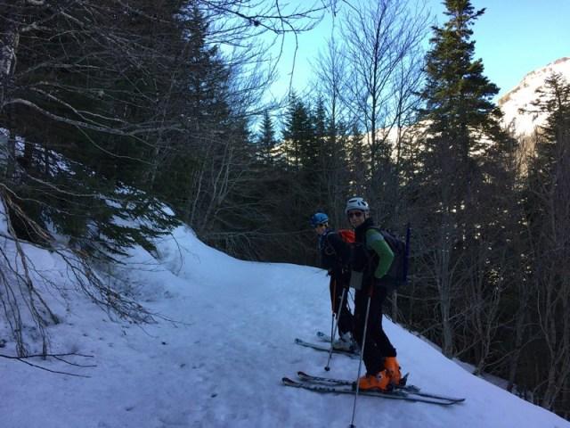 Bajando por el sendero del bosque