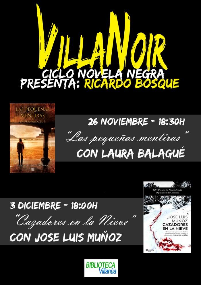 villanoir-ok