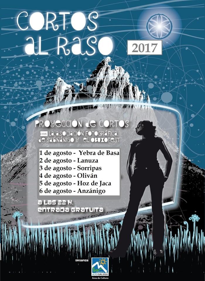 cartel Al Raso 2013