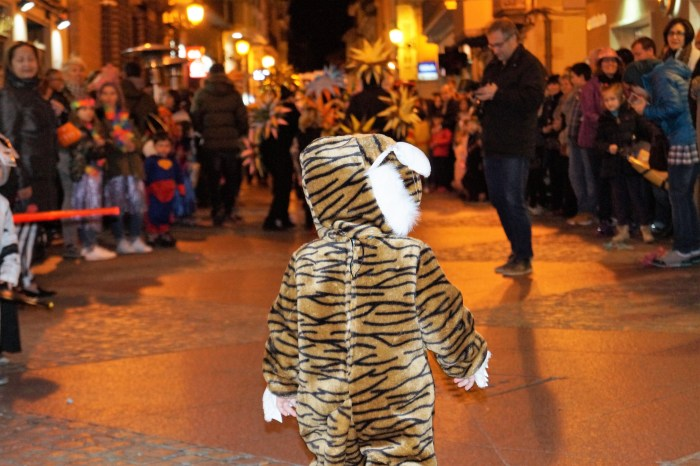 Carnaval jaca (2)