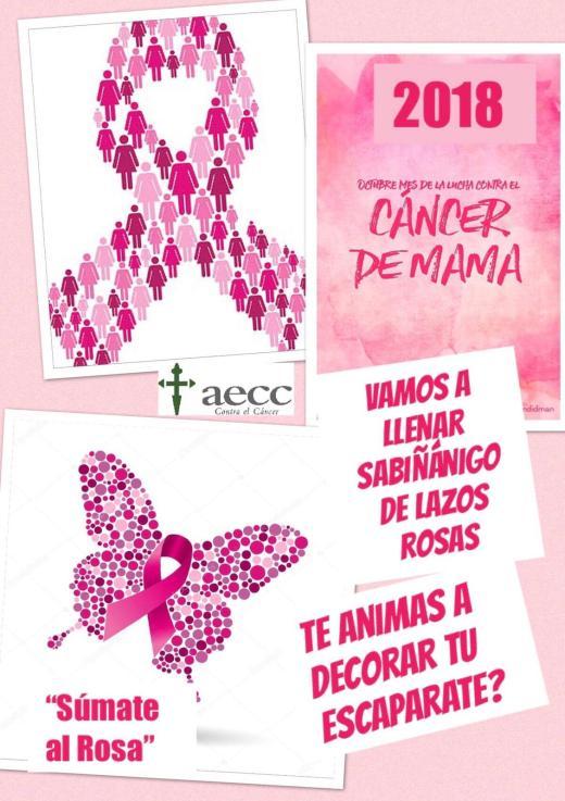 Imagenes Lazos Rosas Cancer.Sabinanigo Y Jaca Se Suman Al Rosa Contra El Cancer De Mama
