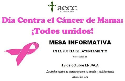 cáncer mama jaca
