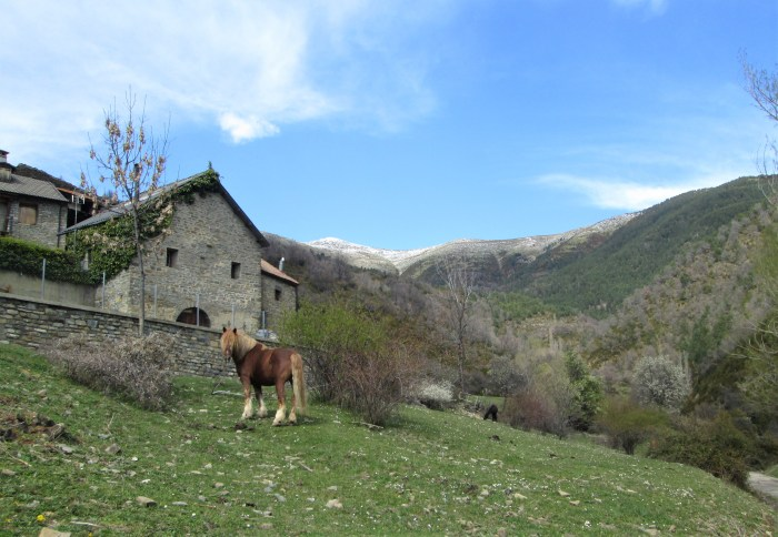 Magia en el valle más invernal de Sabiñánigo (Acumuer).