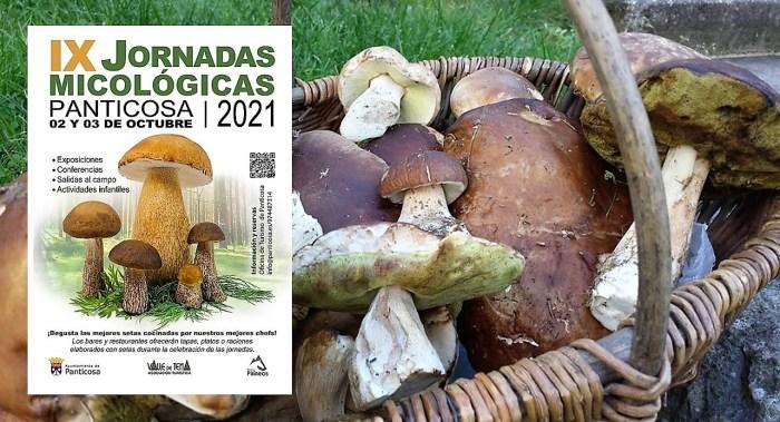 Panticosa celebra sus IX Jornadas Micológicas los días 2 y 3 de octubre