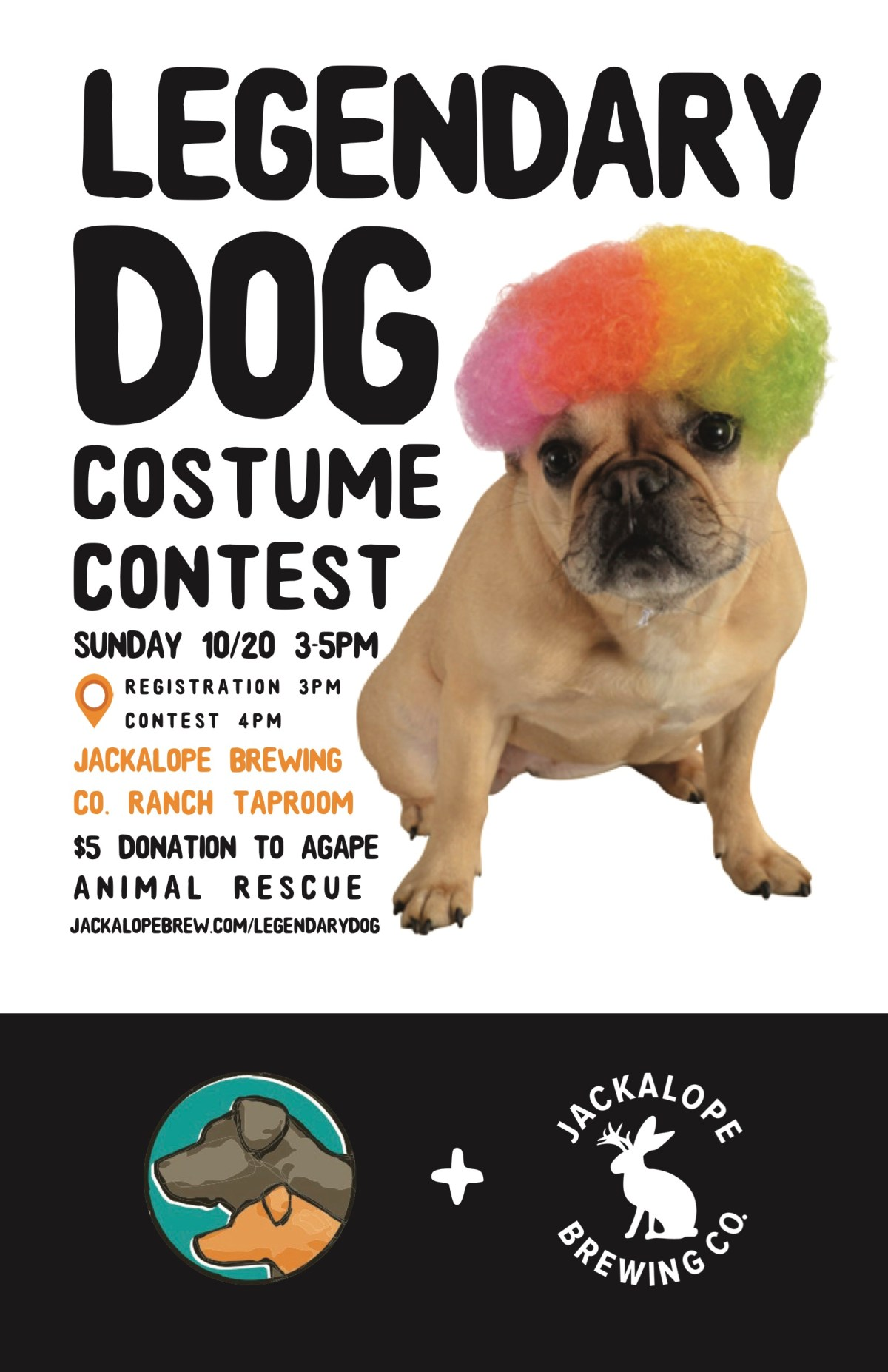 https://i0.wp.com/jackalopebrew.com/wp-content/uploads/2019/09/Legendary-Dog-Costume-Contest.jpg?fit=1200%2C1854&ssl=1