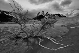 torres_del_paine_paysage_autour_cascade-7